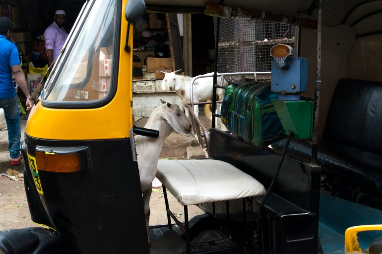 JW_RusselMarket_Bangalore_31102017_07